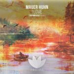 Mauerhuhn – In Love And A Remix