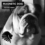 Alan Fitzpatrick – Magnetic Dog [WAV free]