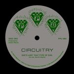 She's Just That Type – Circuitry [FLAC] – [Vinyl]
