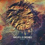 Tanzlife, ID Ensemble – Meteora [AIFF]