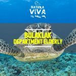 Bulaklak – Department Elderly [AIFF]