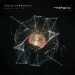 Sinisa Tamamovic – Green Light