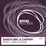 Sasch BBC, Caspar – Pfau / Gold Palm