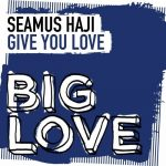 Seamus Haji – Give You Love