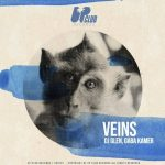 DJ Glen, Gaba Kamer – Veins