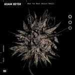 Adam Beyer – What You Need (Kölsch Remix)