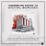 "Traumer – ASSEMBLING PIECES"" LP : DIGITAL BONUSES"