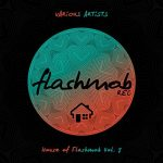 VA – House of Flashmob, Vol. 7