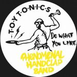 Phenomenal Handclap Band – Do What You Like