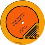 Orlando Voorn – TRIANGLE TREASURES, VOL. 1