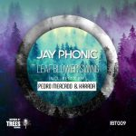 Jay Phonic – Leaf Blower Swing
