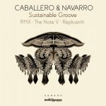 Navarro & Caballero – Sustainable Groove