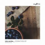 Luka Sambe – Cognition