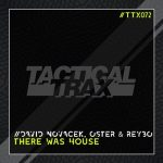 David Novacek, REYBO, Oster – There Was House