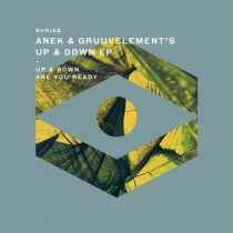 Anek & GruuvElement's – Up & Down