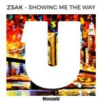 Zsak – Showing Me The Way