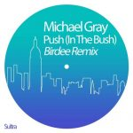 Michael Gray – Push (In the Bush) – Birdee Remix