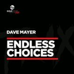 Dave Mayer – Endless Choices