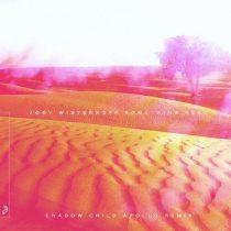 Jody Wisternoff – Something Real (Shadow Child Apollo Remix)