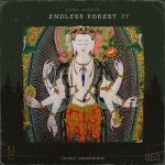 Zuma Dionys – Endless Forest
