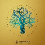 VA – Steyoyoke Perception, Vol. 7