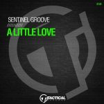 Sentinel Groove – A Little Love