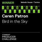Ceren Patron – Bird in the Sky