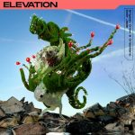 Brigado Crew, Deer Jade – Elevation