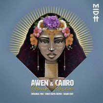 AWEN & Caiiro – Your Voice