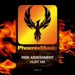 Risk Assessment – Hurt Me