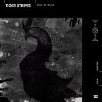 Tiger Stripes – Back in Black