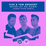 Vize, Tom Gregory – Never Let Me Down (James Hype Extended Remix)