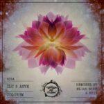 Ilu & Aaye – Colorum