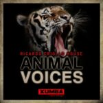 Ricardo Criollo House – Animal Voices