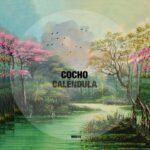 Cocho – Calendula