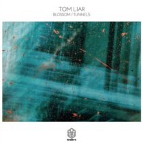 Tom Liar – Blossom / Tunnels