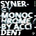 Synergy – Monochrome By Accident