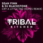 DJ Blackstone, Sean Finn – Cry A Little (No Hopes Remix)
