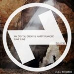 My Digital Enemy, Harry Diamond – Rave Cave