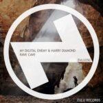 My Digital Enemy, Harry Diamond – Rave Cave