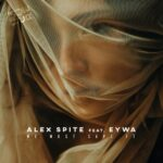 Alex Spite – We Must Save It