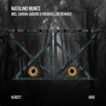 Natalino Nunes – Bird