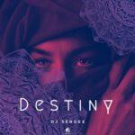 Dj Sergee – Destiny