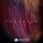 VA – Steyoyoke Paradigm, Vol. 08