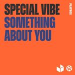 Special Vibe – Something About You