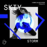 SKIY – Storm (Extended Mix)