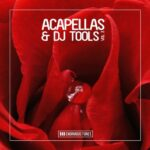 VA – Enormous Tunes – Acapellas & DJ-Tools, Vol. 3