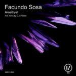 Facundo Sosa – Amethyst