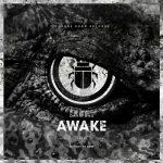David Bau – Awake