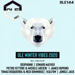 VA – Ole Winter Vibes 2020